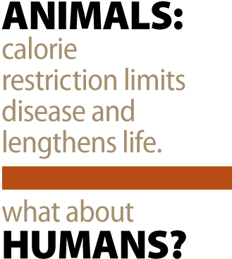 Animals: Calorie restriction limits disease and lengthens life. What about Humans?