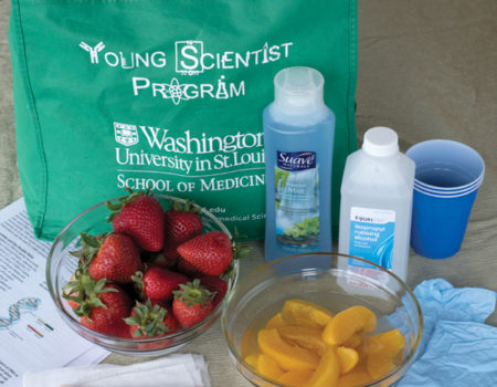 "The YSP creates ""experiments-in-a-bag"" available online to K-12 schools."